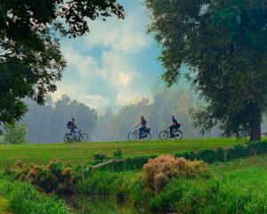 sport rowery